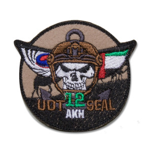 아크12진 UDT/SEAL_Tactical Skull UAE_NO274
